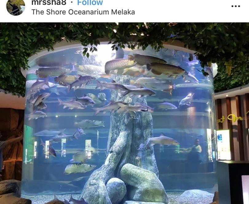 海洋水族馆 The Shore Ocenarium